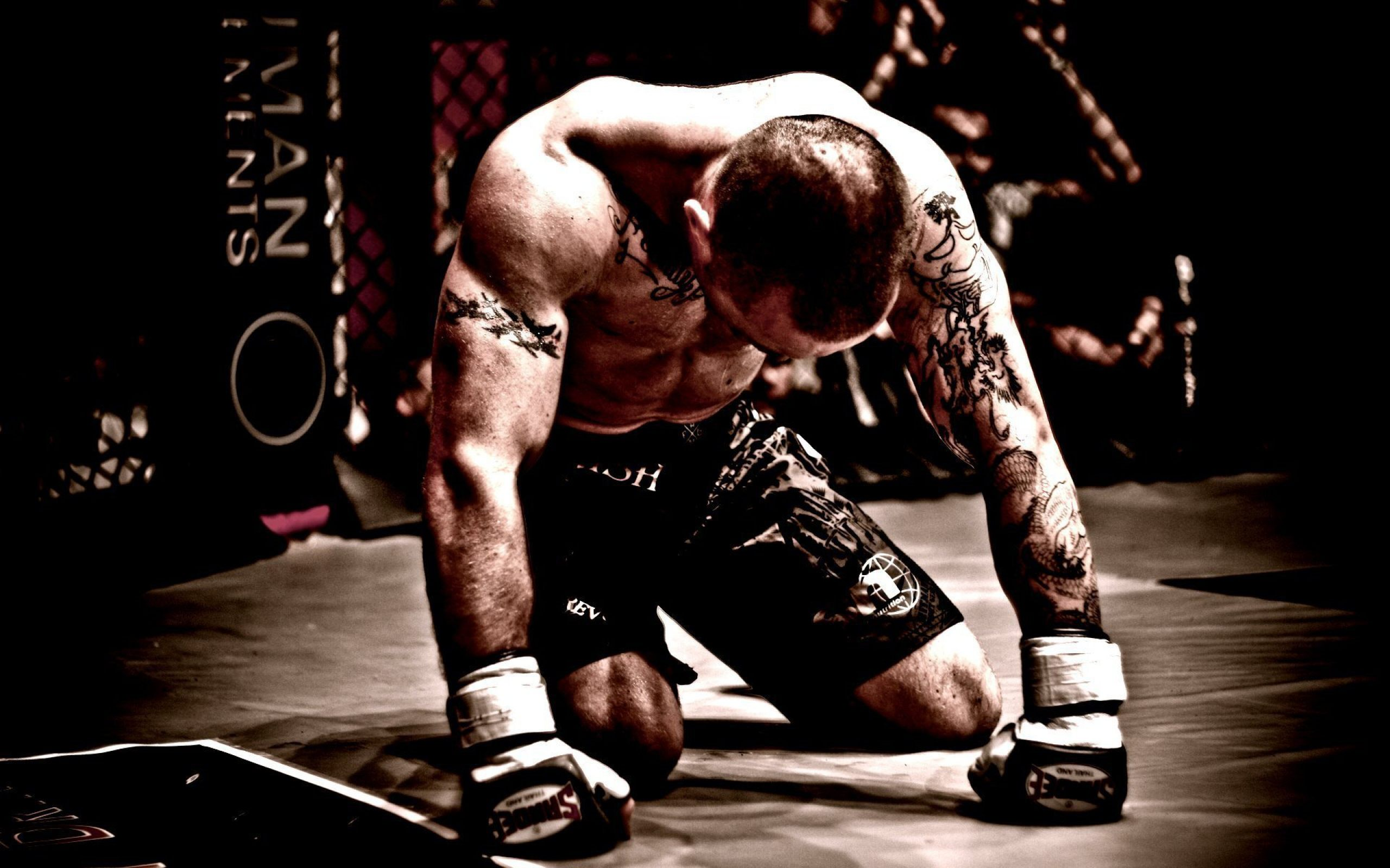 Mma Fighter Boxing Wallpaper