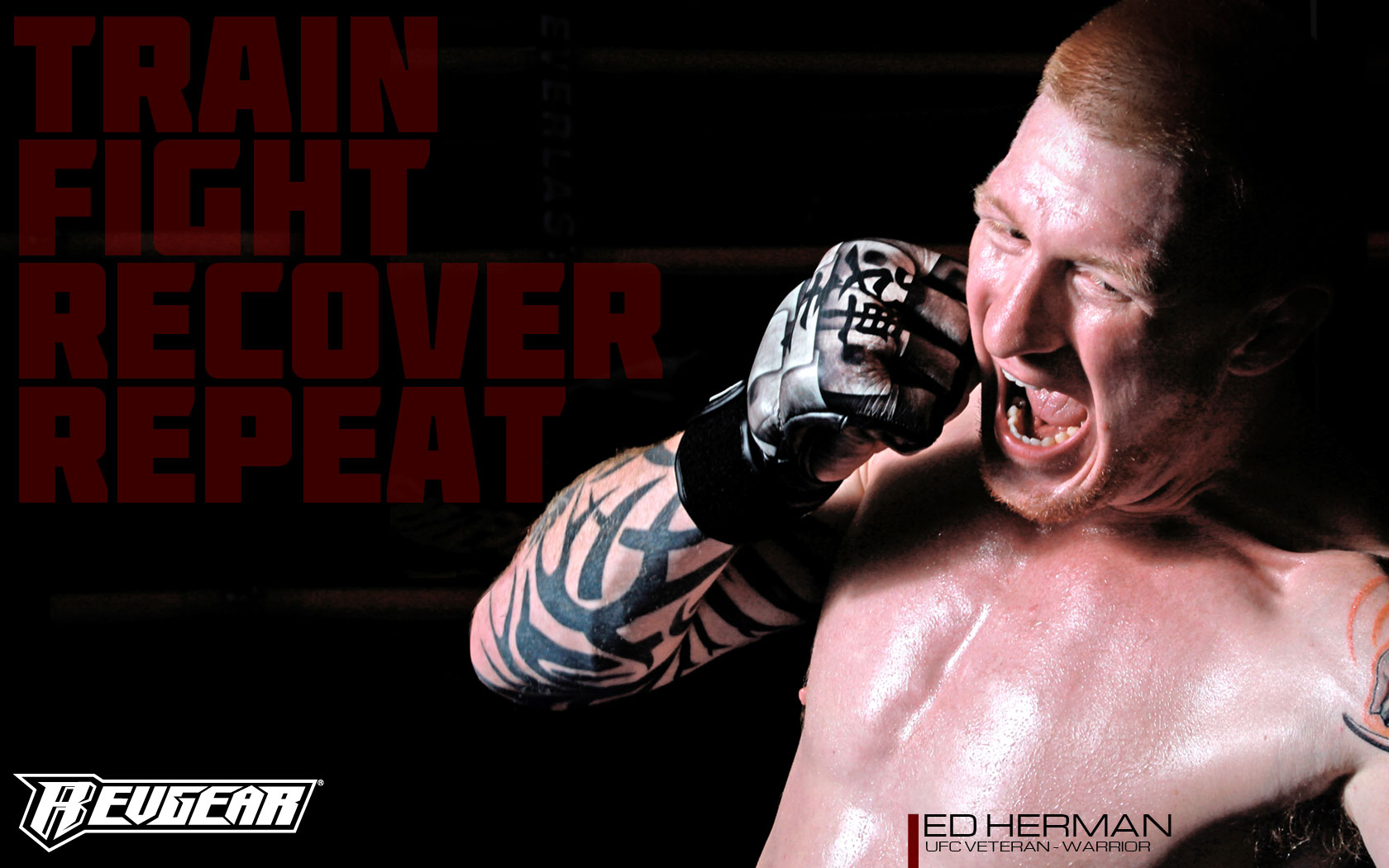 Top 5 Best Mma Gloves For Heavy Bag Work A Fighters Guide