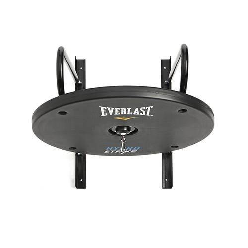 everlast hydrostrike speed bag platform