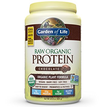 best organic vegan protein powder