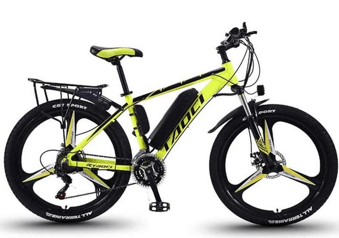 BWJL electric mountain bike 350W