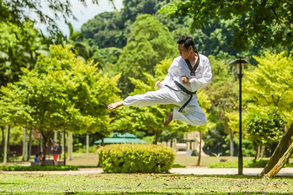 martial arts benefits for the body