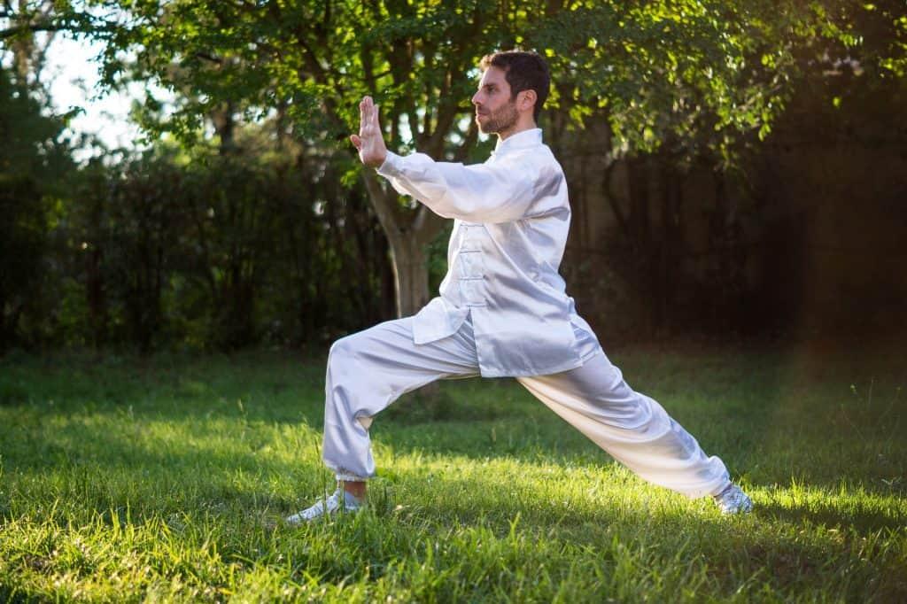 kung fu martial arts health benefits