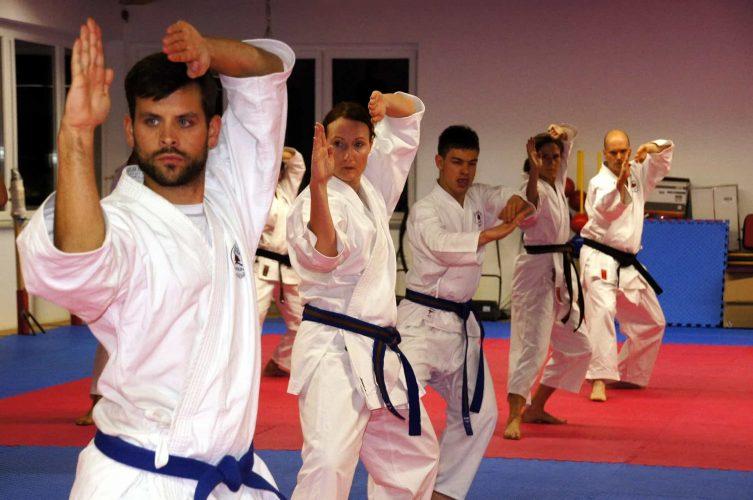 martial arts health benefits