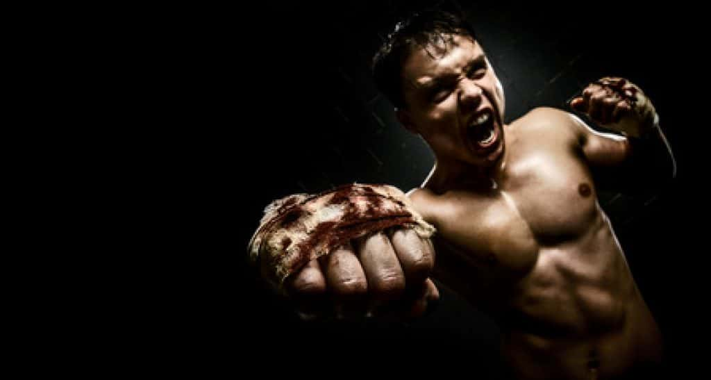 Fitness Fighters Best MMA
